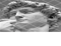 banner cinefórum