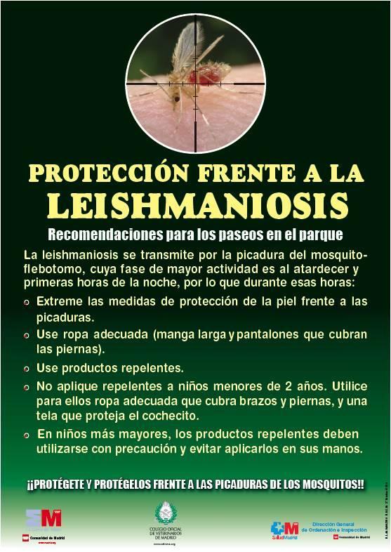 Portada de la publicación Protección frente a la Leishmaniosis. Recomendaciones para los paseos en el parque