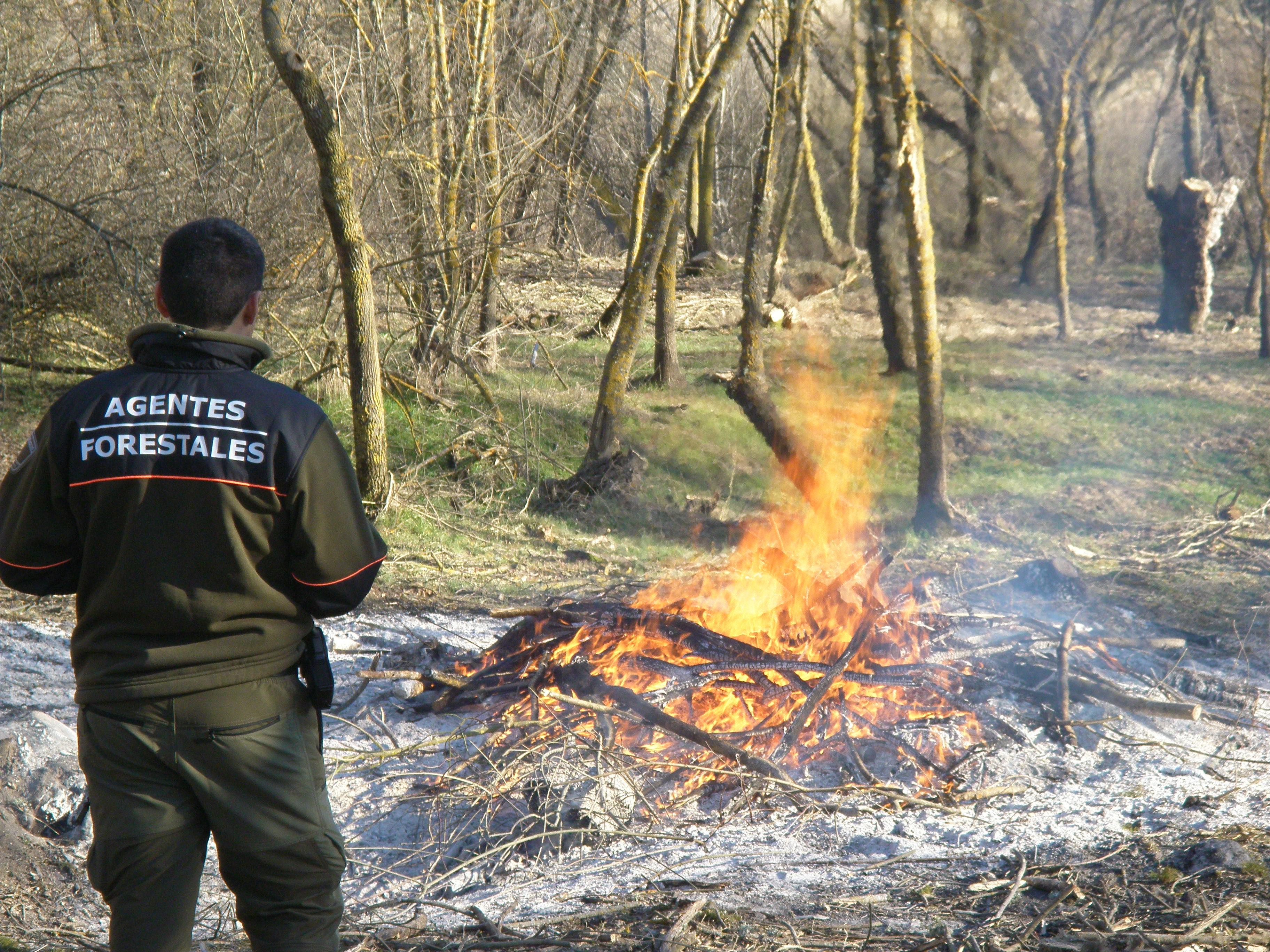 Agente Forestal examinando una quema