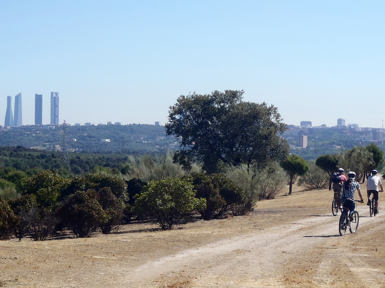 Vista de las cuatro torres desde el Parque Forestal Adolfo Suárez-Casa de Campo