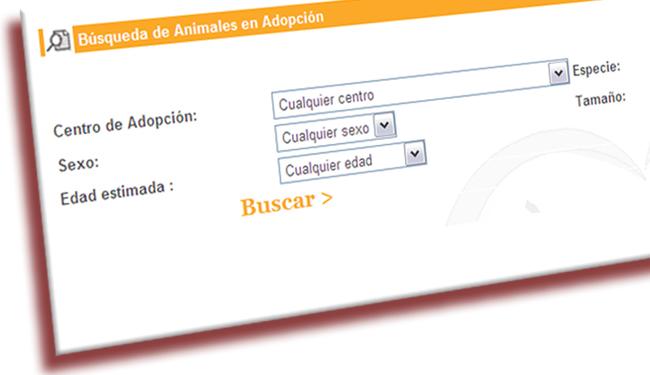 Formulario Madridadopta