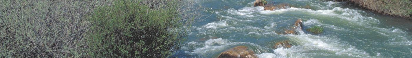 Imagen de la cuenca del río Lozoya