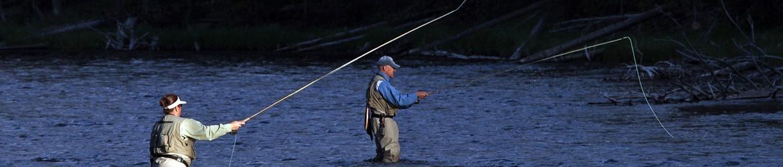 Sección de Caza y Pesca del Consejo de Medio Ambiente