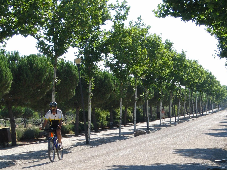 Imagen de ciclista en un camino del sur de Madrid