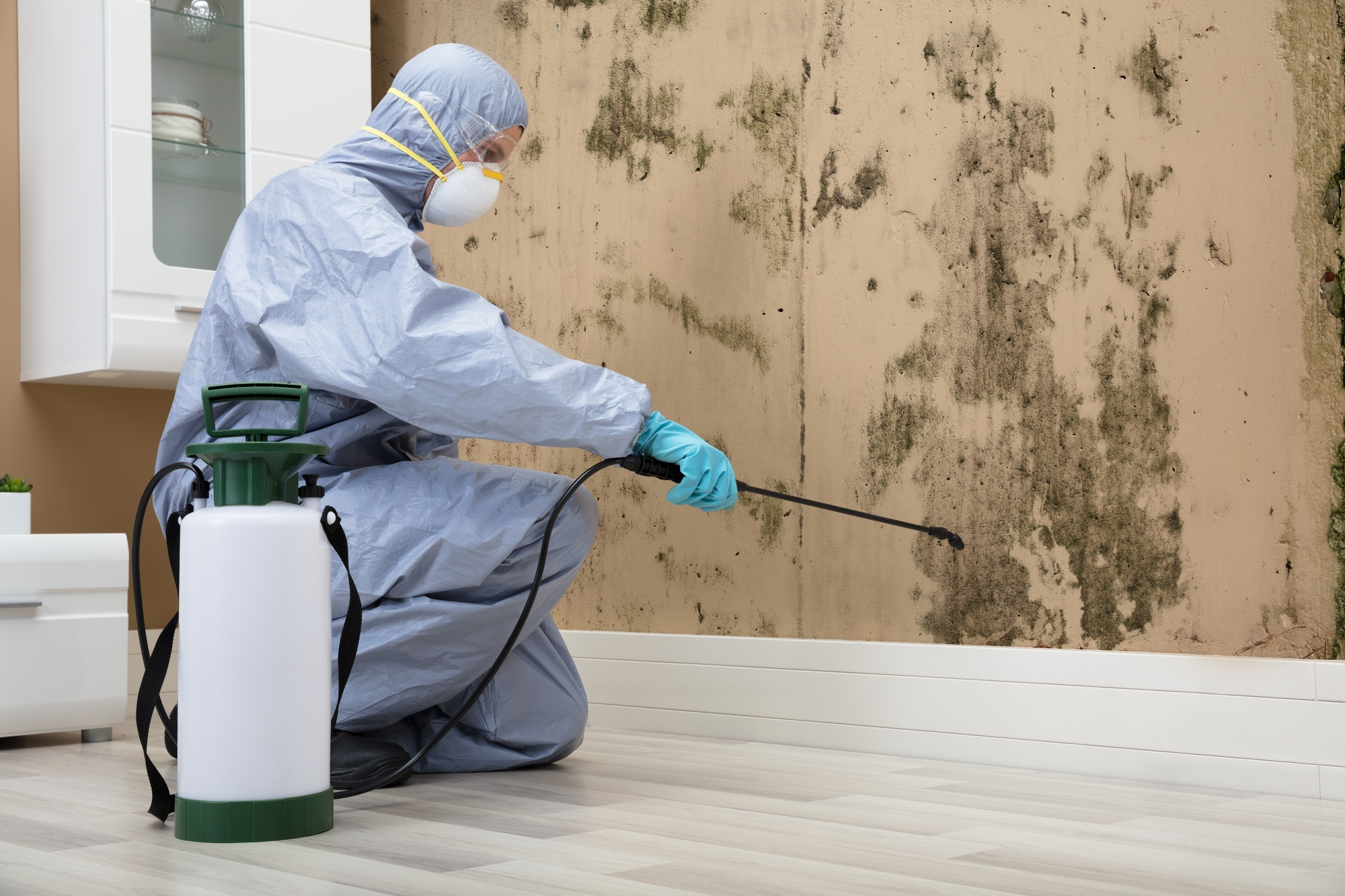 Aplicador de biocidas pulverizando en el interior de una casa