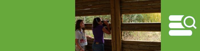 Actividades de educación ambiental