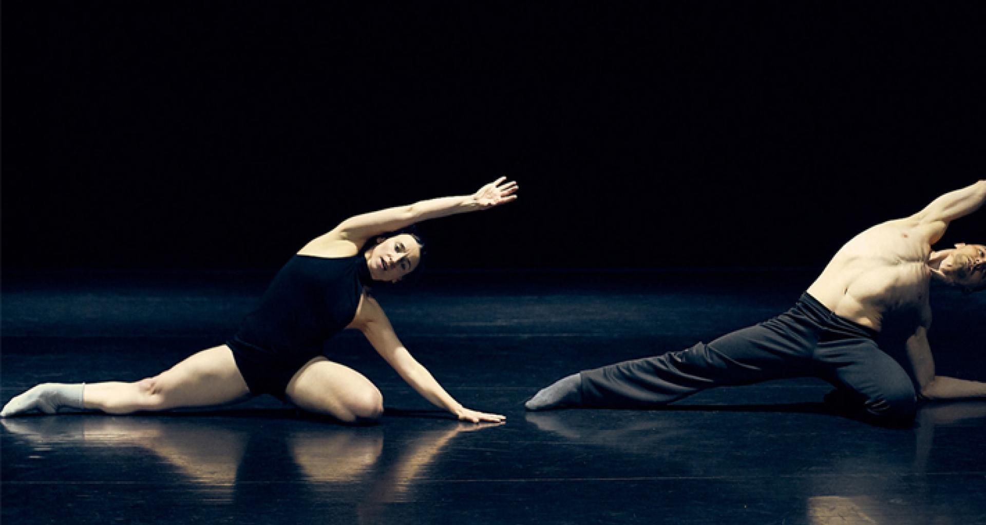 Madrid en Danza reabre las puertas de los Teatros del Canal la ...