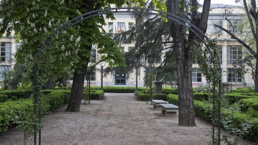 vista palacio v
