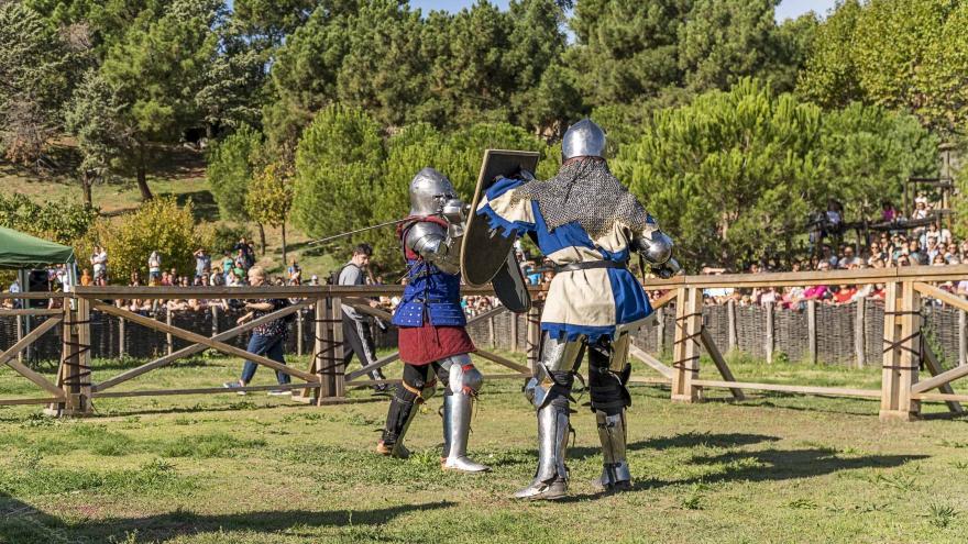 Dos combatientes en acción