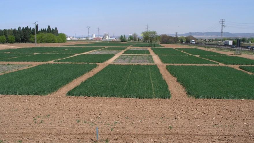 Conservación suelos