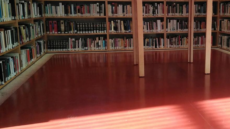 biblio sala lectura 2