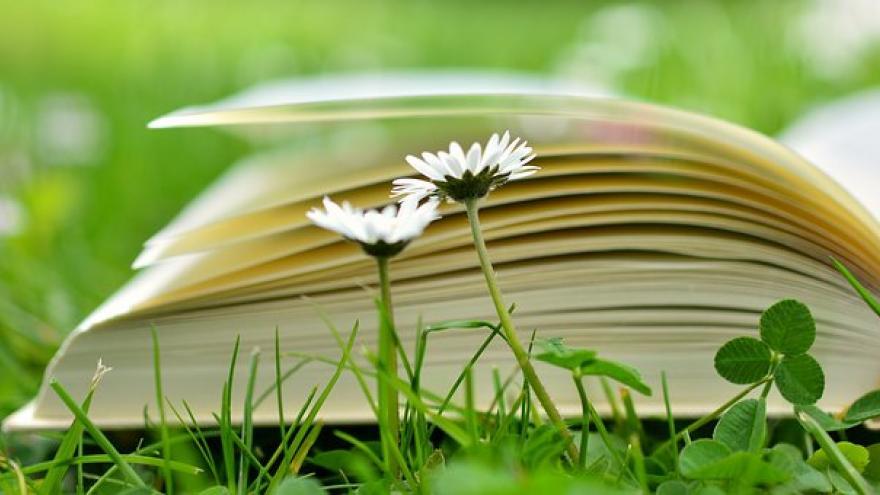 Libro y flores