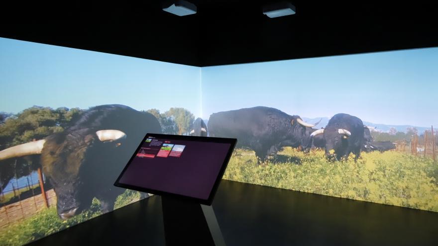 Sala inmersiva en el Museo Taurino de Las Ventas