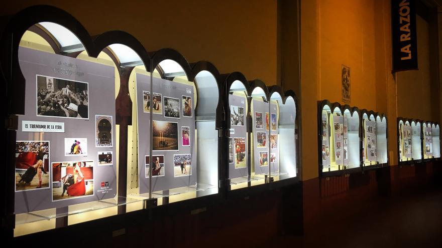 Las mejores imágenes de San Isidro 2019 en las vitrinas del tendido