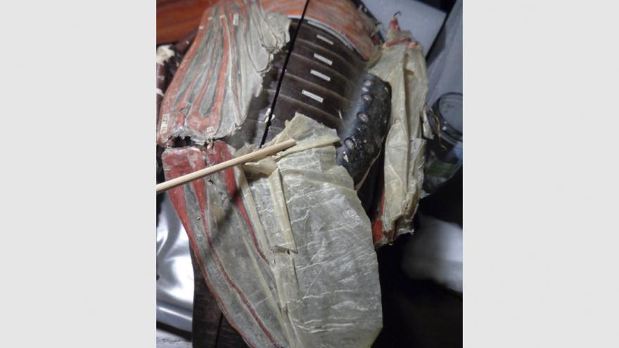 Restauración de escarabajo con detalle fractura del ala