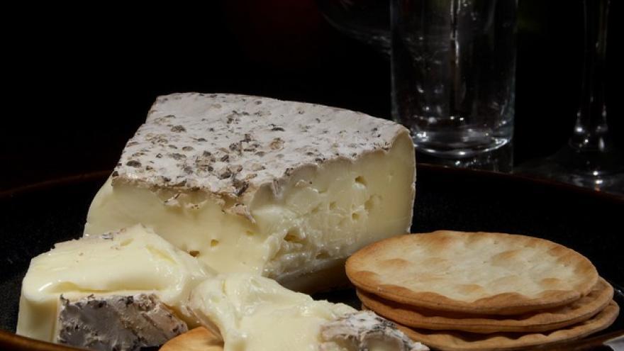 queso tipo brie