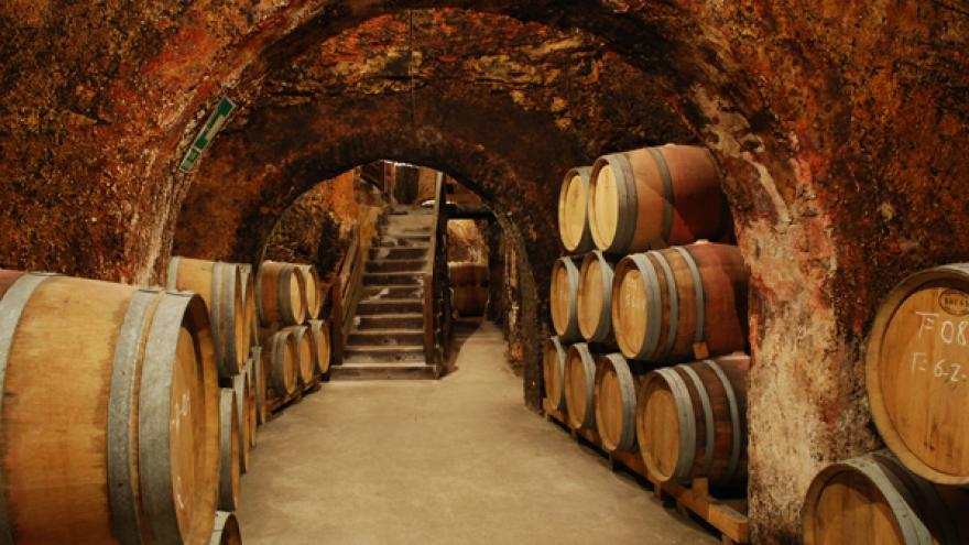Barricas en bodega DOP Vinos de Madrid