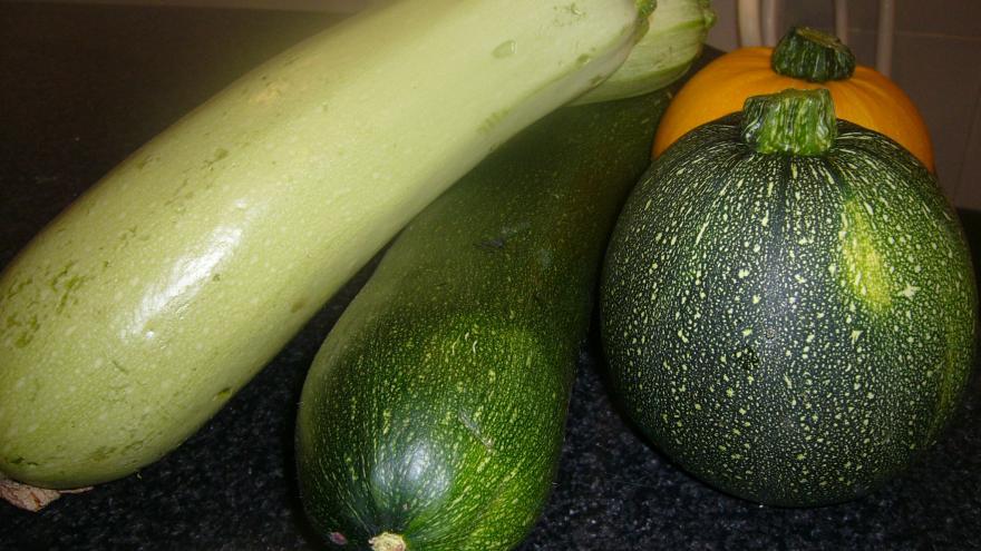calabacines variados