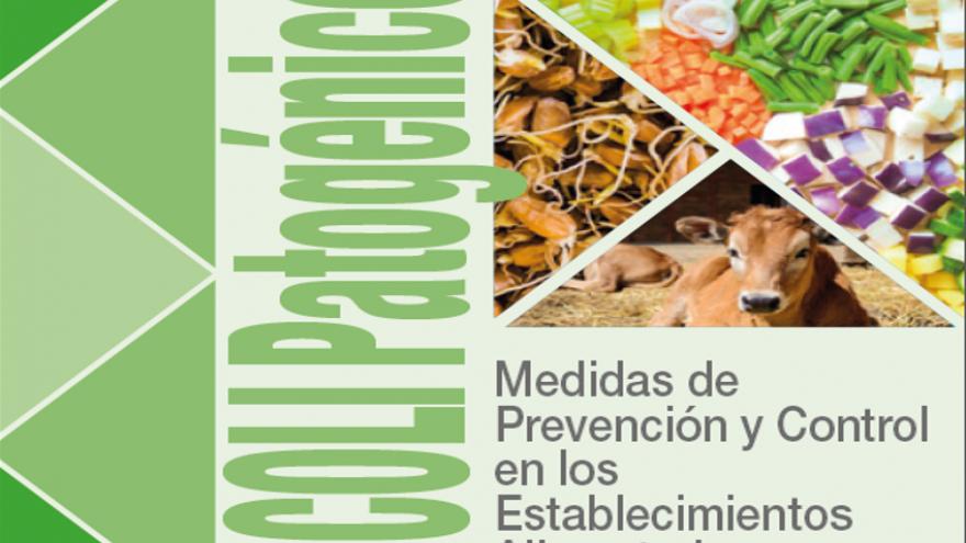 Portada folleto E.coli patogénico