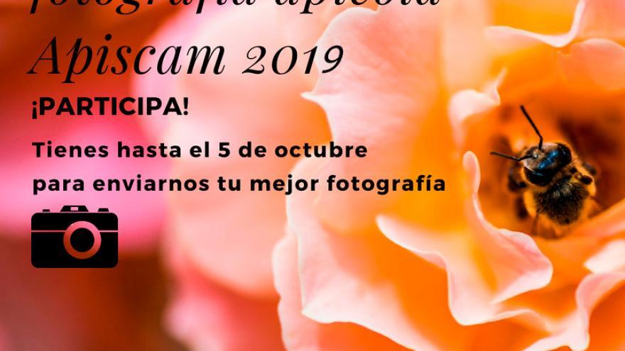 CARTEL CONCURSO DE FOTOGRAFIA 2019