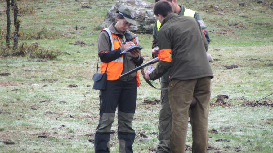 Control de caza menor por parte de agentes forestales
