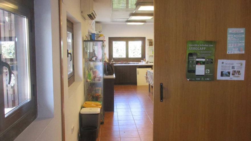 Acceso al aula en el interior del Centro de educación ambiental Bosque Sur