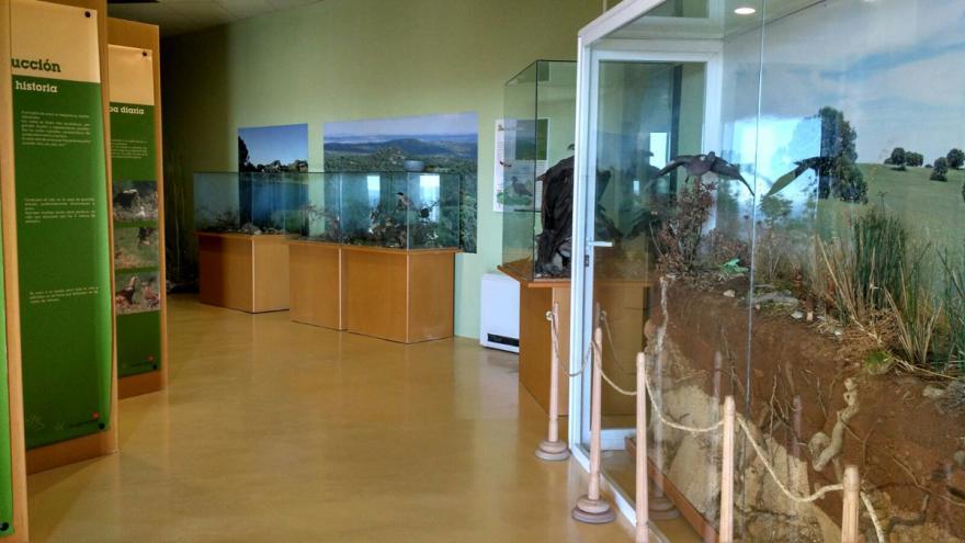 Exposición permanente en el Centro de educación ambiental El Águila