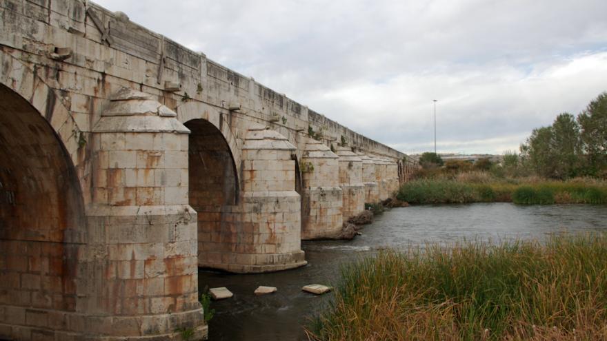 Puente Largo_Aranjuez