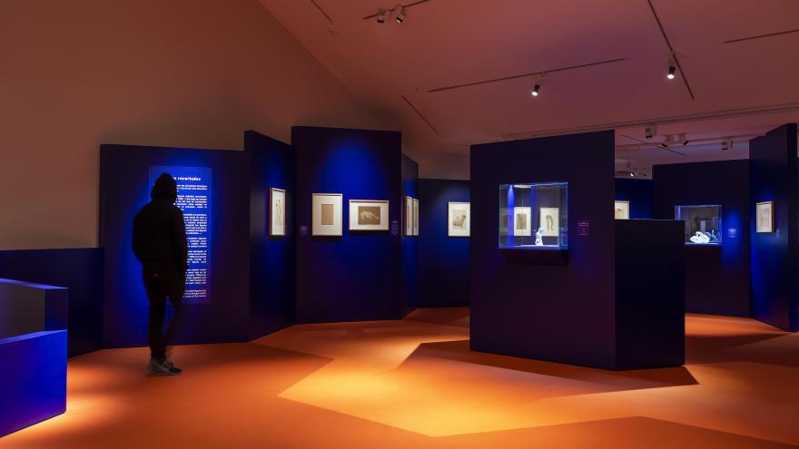 Sala Exposición Rodin