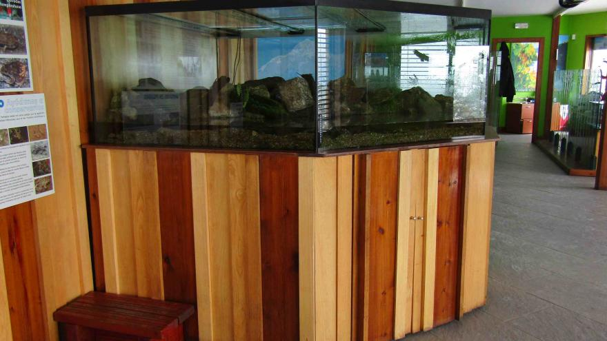 Acuaterrario del Centro Visitantes Peñalara