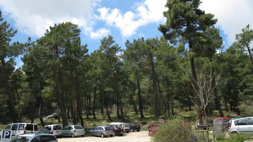 Aparcamiento del Centro Arboreto Luis Ceballos. Es necesario solicitar permiso para acceso de vehículo por la pista forestal.