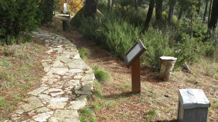 Enlosado de itinerario en el Centro de educación ambiental Arboreto Luis Ceballos