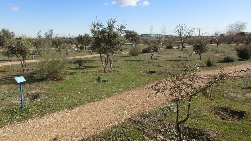 Área de Plantaciones temáticas en el Centro de educación ambiental Bosque Sur