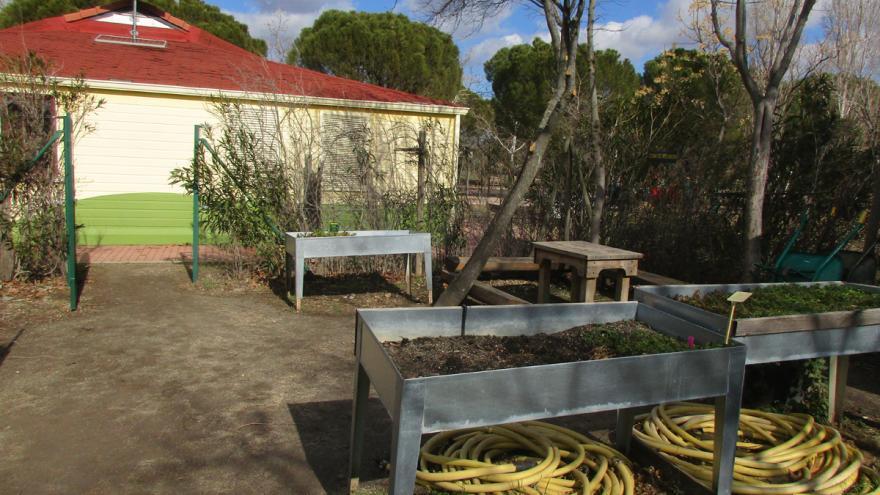 Huerto didáctico / ecológico en el Centro de educación ambiental Polvoranca