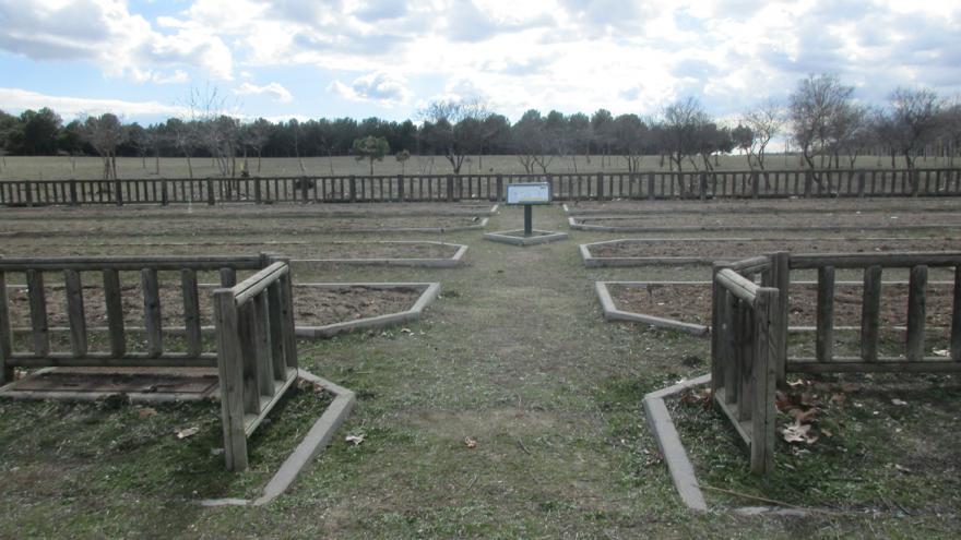 Parcela de secano en el Centro de educación ambiental Polvoranca