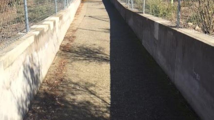 Rampa de acceso al Centro de educación ambiental El Campillo