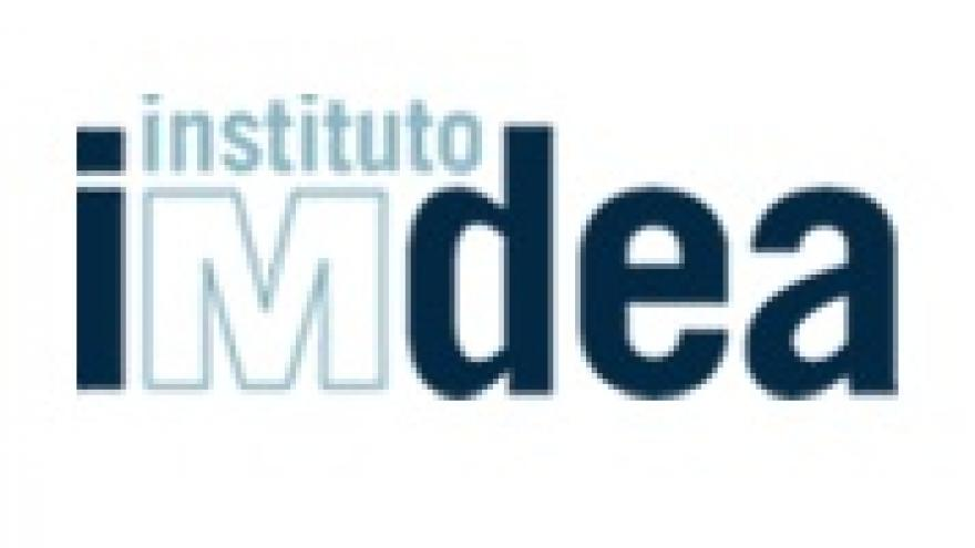 Logo Instituto IMDEA