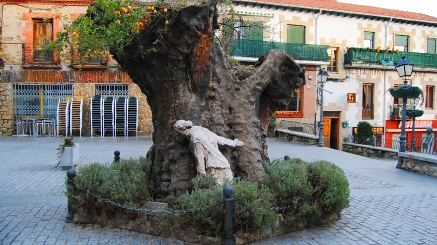 Imagen del álamo con la escultura de la pipera
