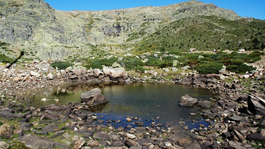 Humedales_Macizo de Peñalara. Laguna Chica