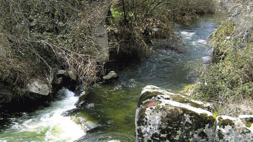 Puente de la Navata. Parque Regional del curso medio del río Guadarrama y su entorno