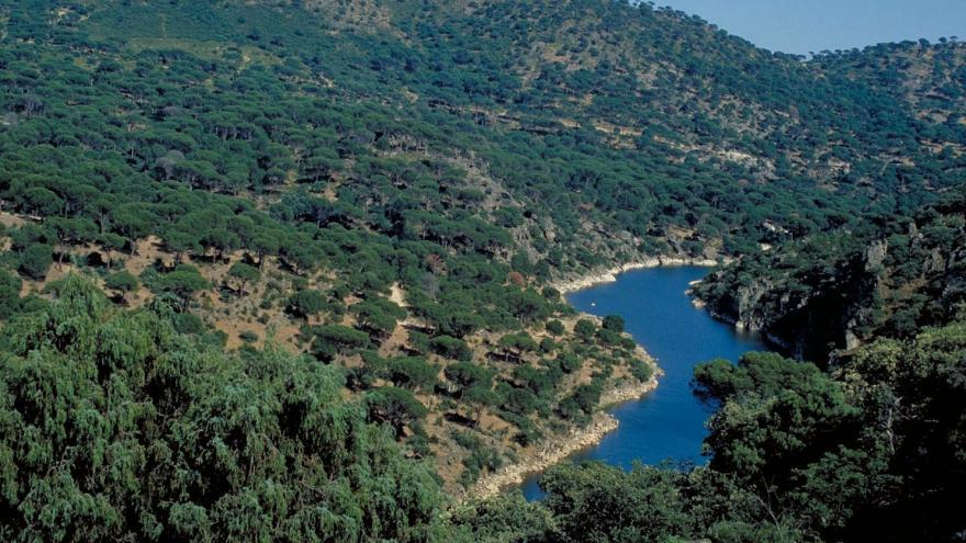 Río Cofio por San Martín de Valdeiglesias