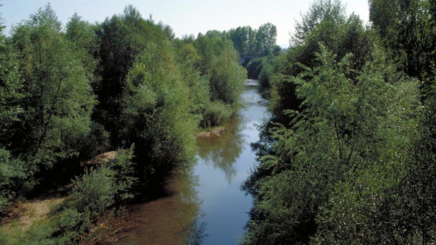 Río Jarama en Talamanca del Jarama