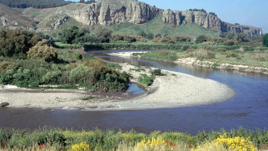 Río Jarama-Manzanares. La Marañosa