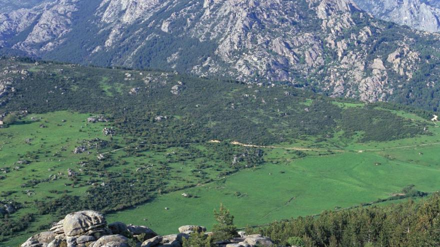 Parque Regional de la cuenca alta del Manzanares. La Pedriza