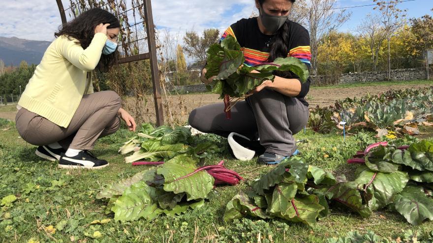 Nuevo Laboratorio de Agricultura Abierta en Aranjuez