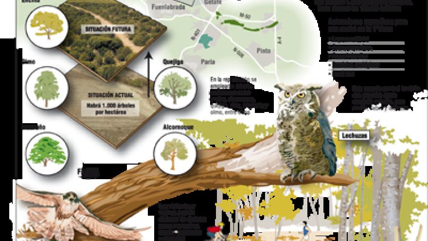 Cartel Primera Fase de Bosque Sur