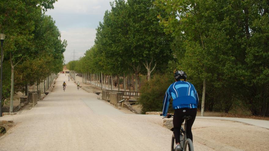 Paseo principal del Parque Polvoranca