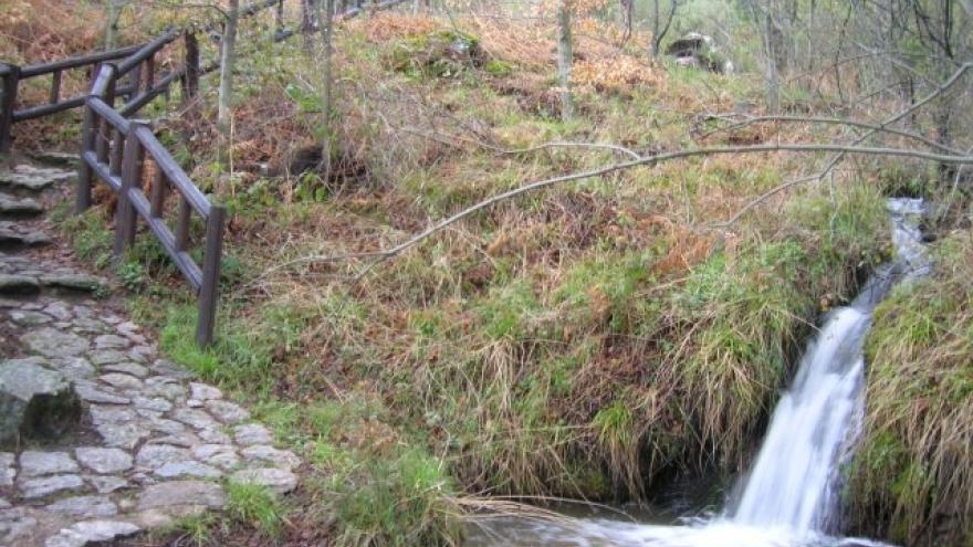 Paseo por el Centro de educación ambiental Arboreto Luis Ceballos