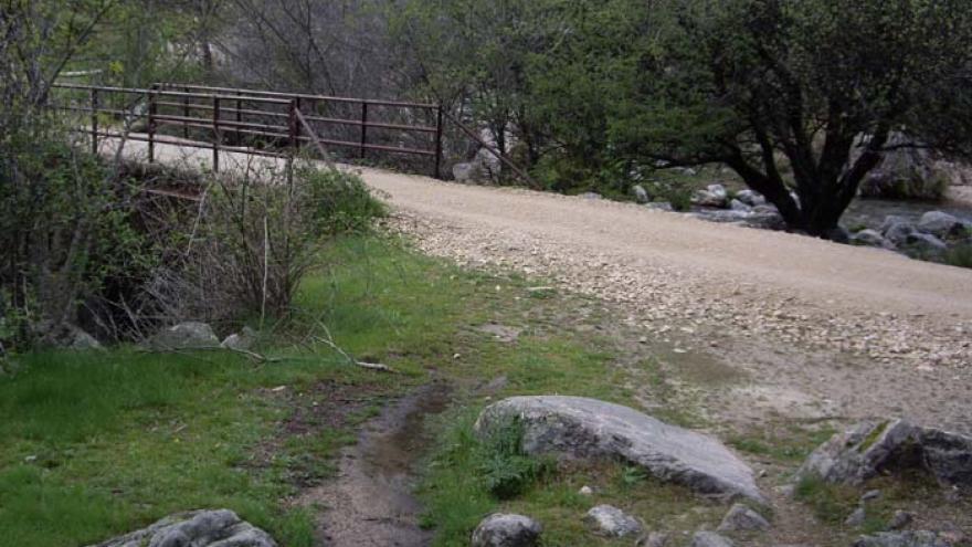 Senda del Puerto de Navacerrada a Canto Cochino