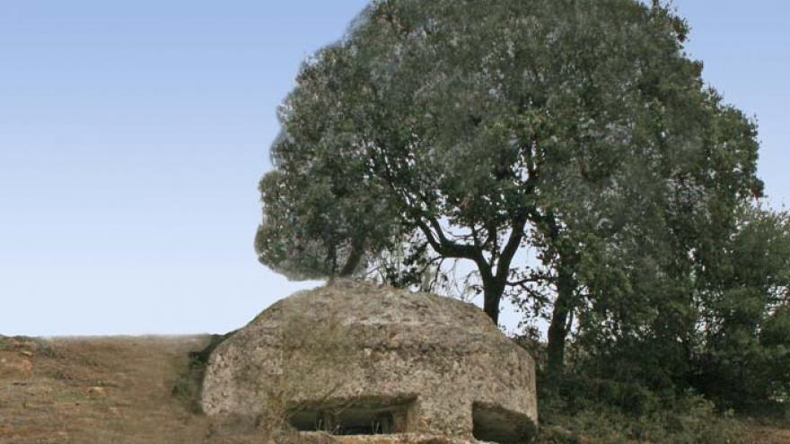 Bunker de la Guerra Civil al lado de encinas